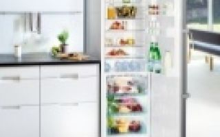 Холодильник без морозильной камеры: топ-7 лучших моделей + плюсы и минусы такого решения