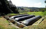 Как сделать биотопливо своими руками из навоза в домашних условиях