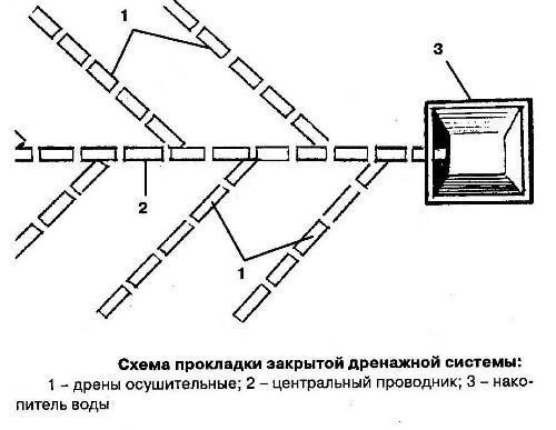 Проект дренажа участка: правила разработки дренажной системы