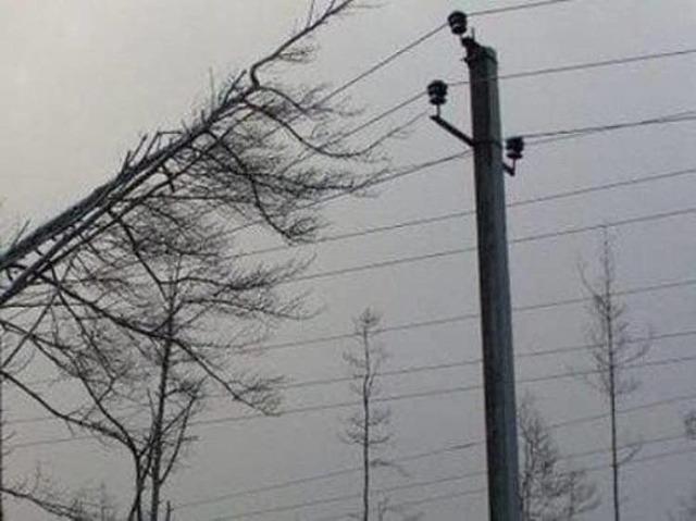 Куда звонить при отключении электричества: как узнать почему отключили и когда дадут свет