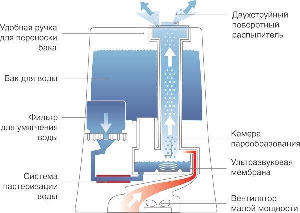 Как работает увлажнитель воздуха: устройство, принцип работы и виды