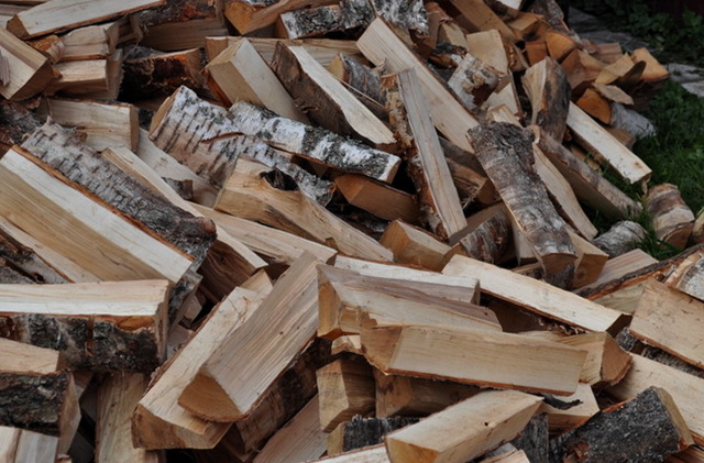 Виды отопления загородного дома: дровами или электричеством обогревать
